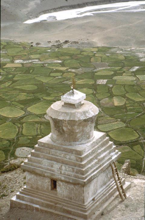 Tibeti sztúpa